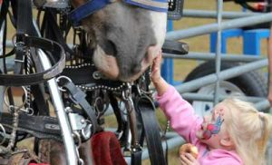 Young girl with face paint petting horse.
