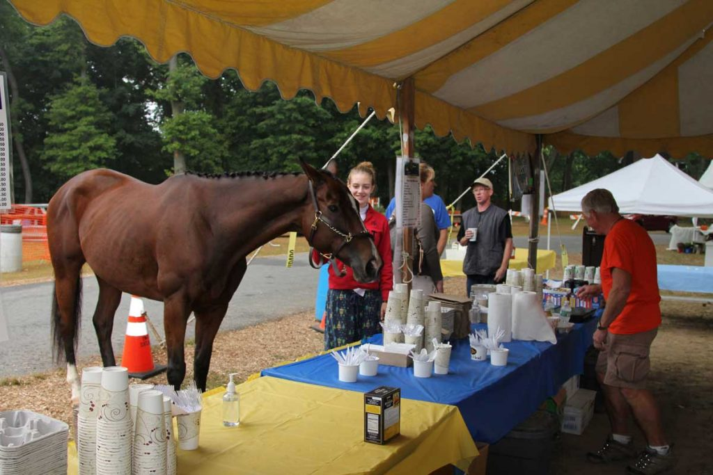 Horse ordering from food tent as Rotarian fills order.