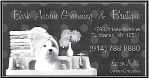 Bark Avenue Grooming & Boutique